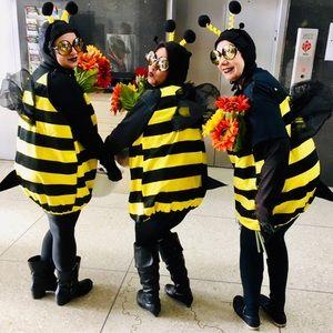 BUMBLE BEE STANDARD SIZE COSTUME SET BUNDLE
